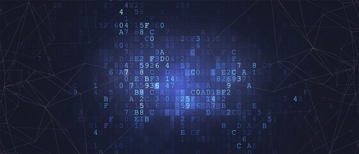数据网络-1